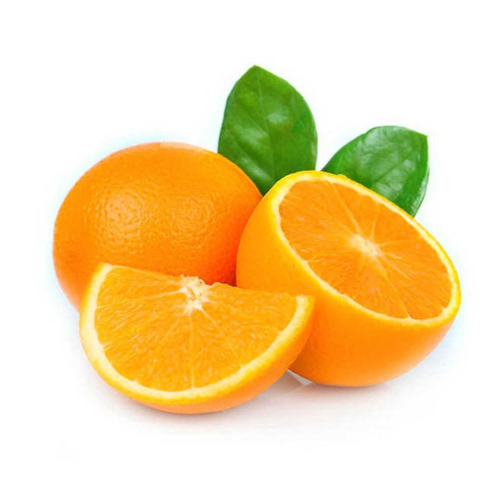 تصویر تامارا پرتقال